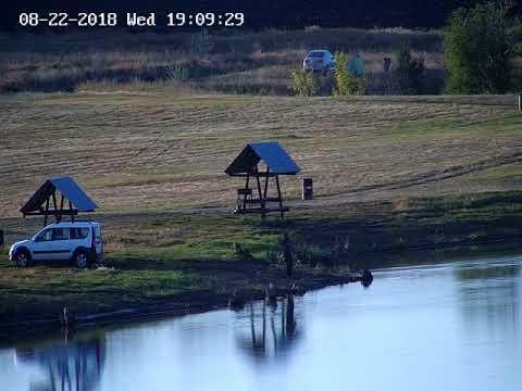 пруд Черноморец 22.08.18г. карп 5 на 15 беседке.