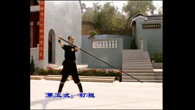 Pan Nam Ving Chun. Part 6.