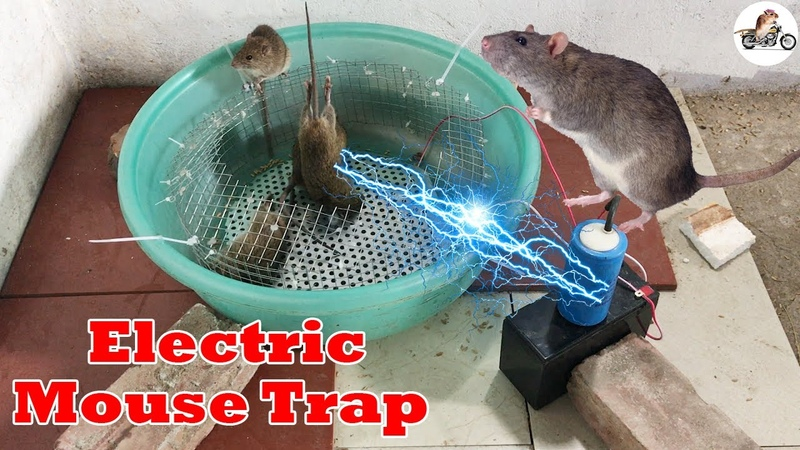 Electric Rat Trap Best Mouse Trap Using Grille Pot Plastic Electric Mouse Trap With Battery 12V