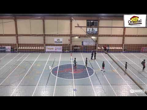 Campeonato Paranaense Série Ouro 2019 - Palmas Futsal x Marreco Futsal
