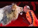 Животные в цирке: развлечение или издевательство? Дискуссия на RTVI