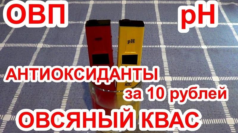 Овсяный квас, ОВП и pH, АНТИОКСИДАНТЫ за 10 рублей