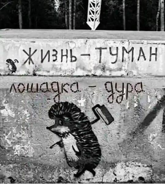 Фото №456239341 со страницы Оли Новиковой