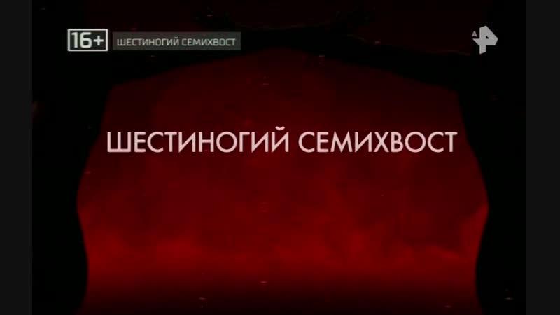 Тайны Чапман - Шестиногий семихвост (12022019)