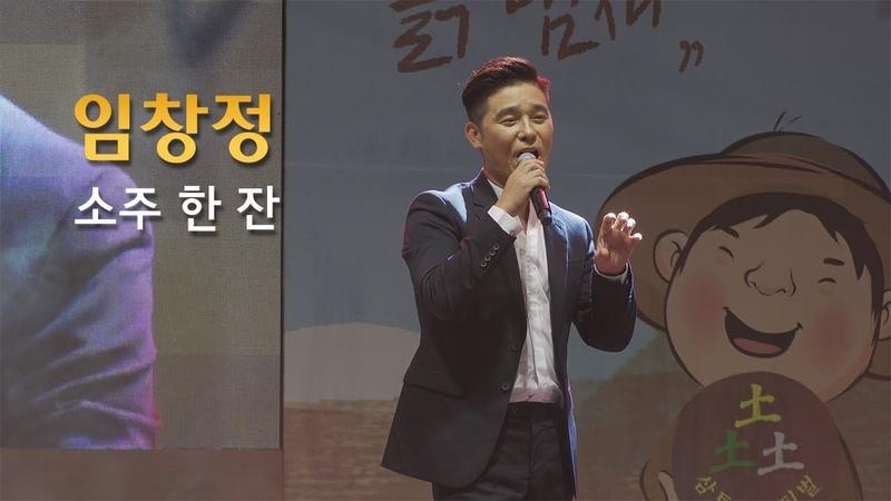임창정 - '소주 한 잔' 라이브 공연 직캠 live cam / 2018 원주삼토페스티벌