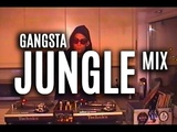RAGGA JUNGLE mix