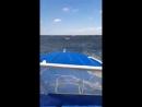 Video c1179bb24cc1a5bd4a4ebb016613121a