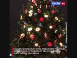 А вы уже нарядили елку? Специально для вас собрали советы по украшению главного символа Нового года.