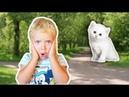 ПРОПАЛ КОТЕНОК что делать? Видео для детей. Family Like