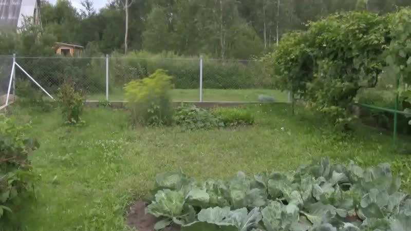 Видеообзор: постройка баньки на дачном участке - vk.com/cottagers