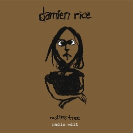 Damien Rice альбом Rootless Tree