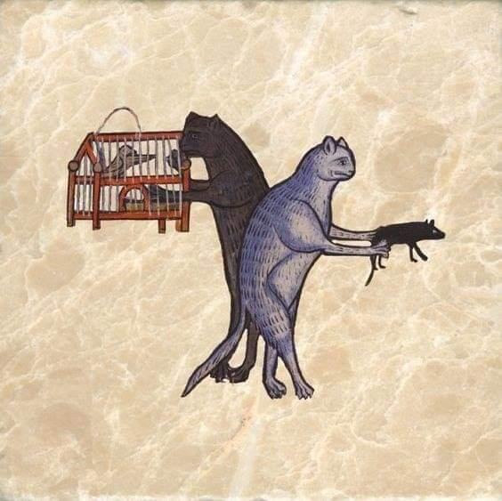 Котики Средневековья. Своя атмосфера