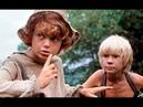 Приключения Тома Сойера и Гекльберри Финна (1981) детский фильм
