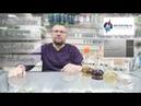 Разговор про фруктовую брагу