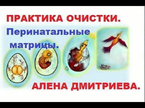 Пробой по перинатальным матрицам МЕДИТАЦИЯ Практика очистки Алена Дмитриева
