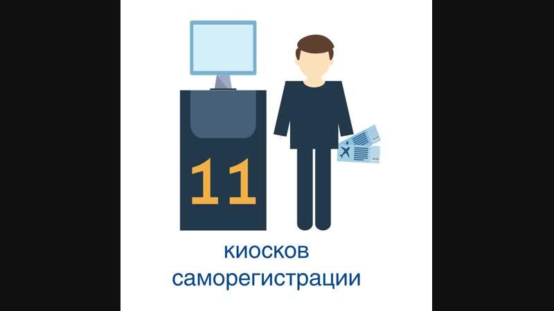 Инфографика про терминал аэропорта Пулково