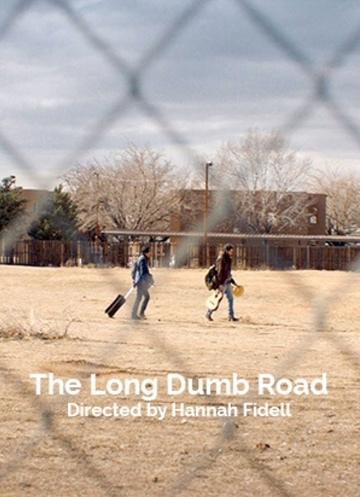 Долгая идиотская дорога (The Long Dumb Road) 2018 смотреть онлайн