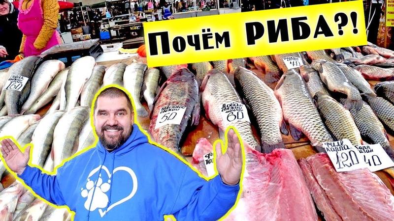Рынок ПРИВОЗ Одесса 2019 ПОЧЕМ РЫБА Цены на продукты в Одессе