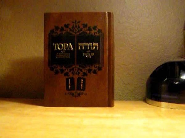 Что подготовило миссию еврейских пастухов в Мире ? - Знания и опыт полученные семитами в Вавилоне и Египте !