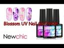 Newchic Review | Blossom UV Nail Gel Polish | Easy Nail Art Desings💓👍 16