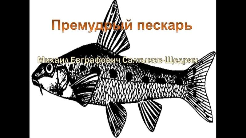 Михаил Евграфович Салтыков Щедрин Премудрый пескарь кратко