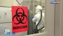 Скандал с лабораторией Лугара США могли нарушить Конвенцию о запрете создания биооружия