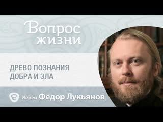 Что такое «древо познания добра и зла»? «Вопрос жизни» с иереем Феодором Лукьяновым