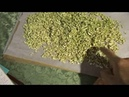 Заготовки на зиму Сушеные овощи грибы ягоды