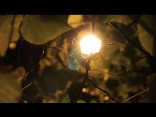 The Last Days of Autumn/Sony a6300