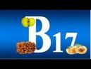 11.11.18 Vitamin B17: Wurde verboten, weil es Krebs heilt
