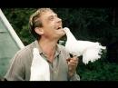 Любовь и голуби в 60 FPS Мелодрама, комедия, 1984, СССР, BDRip 1080p КИНО ФИЛЬМ LIVE