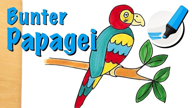 Papagei zeichnen lernen: Der Geräuschimitator unter den Tieren - How to draw a Parrot (Cartoon)