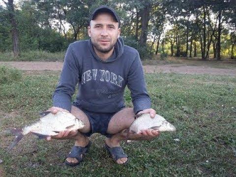 Влог 12 СУПЕР Рыбалка летом на водохранилище ловля подлещика и карася на кормаки
