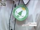 Школьное лесничество появилось в Ростове Общество Первый Яро