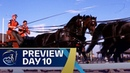 The Driving competitions start Preview Day 10 FEI World Equestrian Games 2018