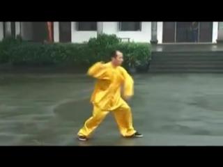 Тайцзицюань стиля Ян -как боевое искусство !