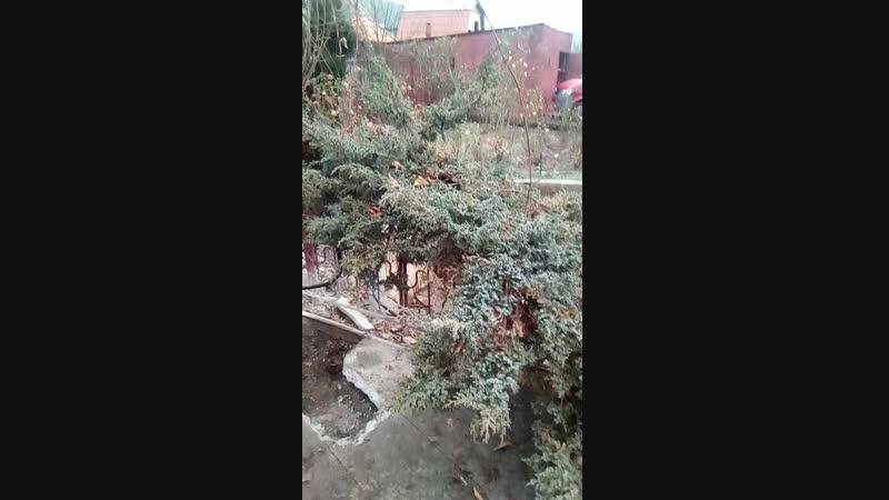 МНЕ КОПАТЬ ТРАНШЕЮ ВЕЛЕНА 6/12/2018 ДОЖДЛИВЫЙ ЧЕТВЕРГ