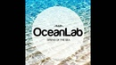 Paul Van Dyk Alex M.O.R.P.H. vs. Oceanlab - Let Satellite Go (Next DJ Mash Up)