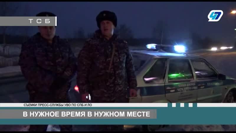47 канал программа ТСБ от 16.01.2019 г. Ово по Тосненскому району ЛО