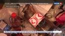 Новости на Россия 24 ФСБ обнародовала видео спецоперации против Артподготовки