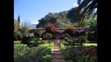 100 Latin American Gardens of Haciendas, Fazendas, Quintas, Estancias