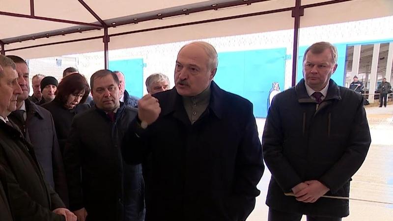Они же гадят друг на друга Лукашенко ЖЕСТКО отчитывает чиновников Визит в Шкловский район