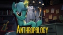 Anthropology - Lyra SFM