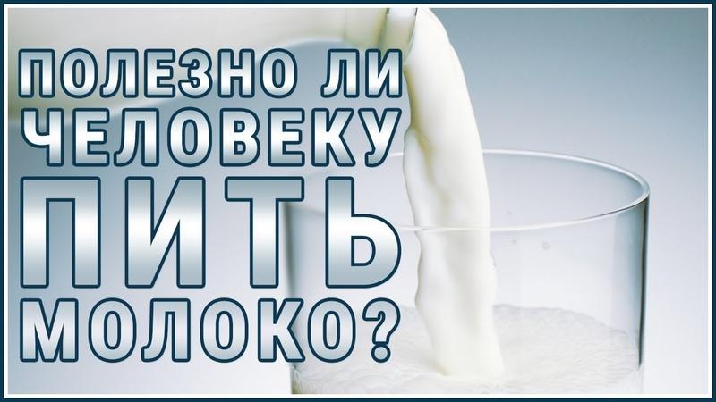 МОЛОКО Творог Сыр Вред молока и молочных продуктов Узнайте Правду Думайте