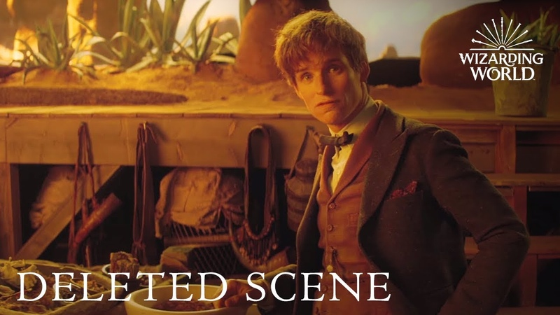 Fantastic Beasts and Where to Find Them DELETED SCENE debut at A Celebration of Harry Potter 2017