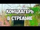 Немецкий концлагерь Калининградская область, находки, поиск, подземелья, подвалы, руины, история