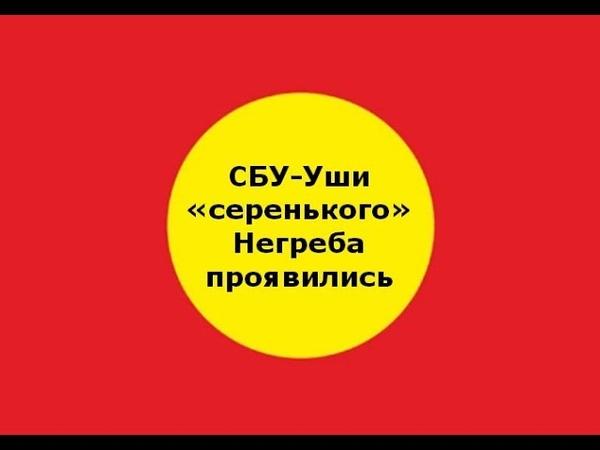 СБУ-Уши «серенького» Негреба проявились