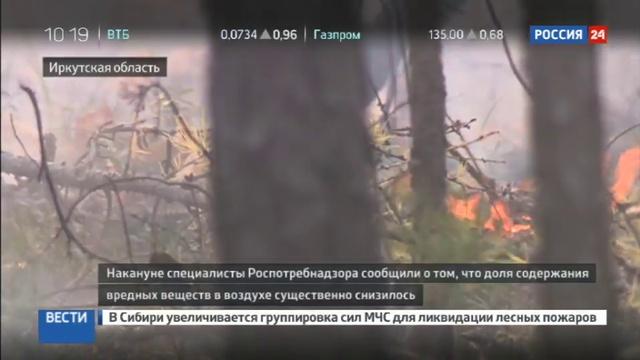Новости на Россия 24 • Лесные пожары в Сибири: спасатели продолжают борьбу