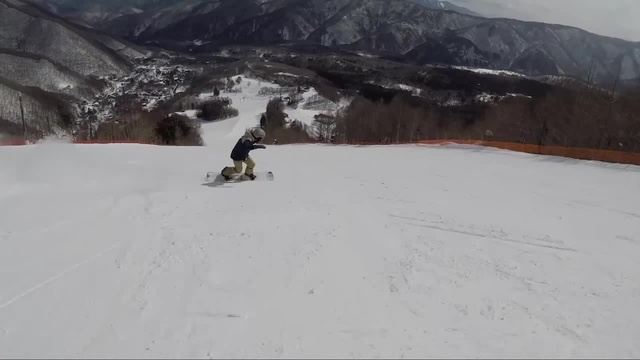 Low carving · coub коуб