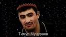 Тимур Муцураев Жизнь суета